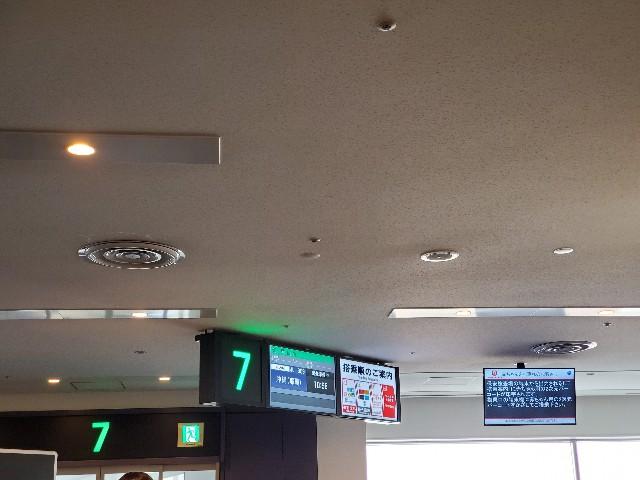 f:id:kinako_yuta:20191110201114j:image