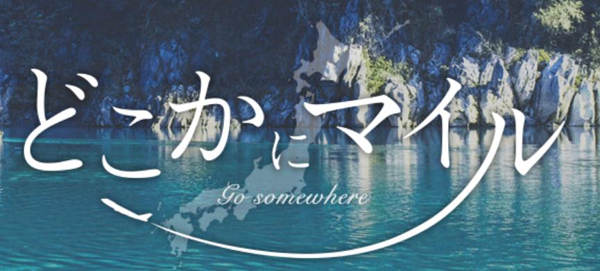 f:id:kinako_yuta:20191111202106p:plain