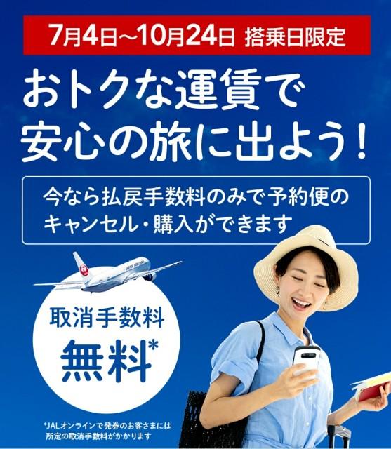 f:id:kinako_yuta:20200709220656j:image
