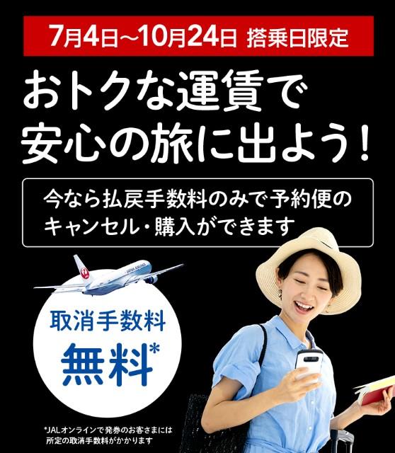 f:id:kinako_yuta:20200710074936j:image