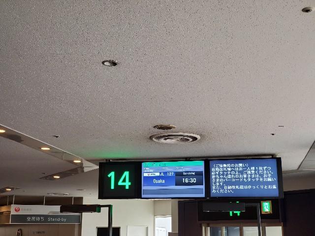 f:id:kinako_yuta:20200725120308j:image