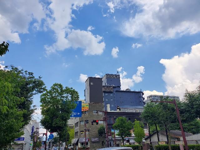 f:id:kinako_yuta:20200823072541j:image
