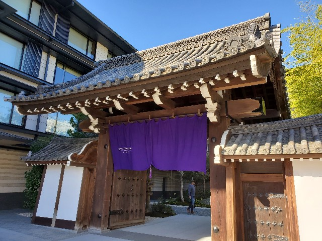 f:id:kinako_yuta:20201115084516j:image
