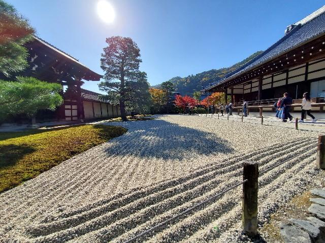 f:id:kinako_yuta:20201209215023j:image