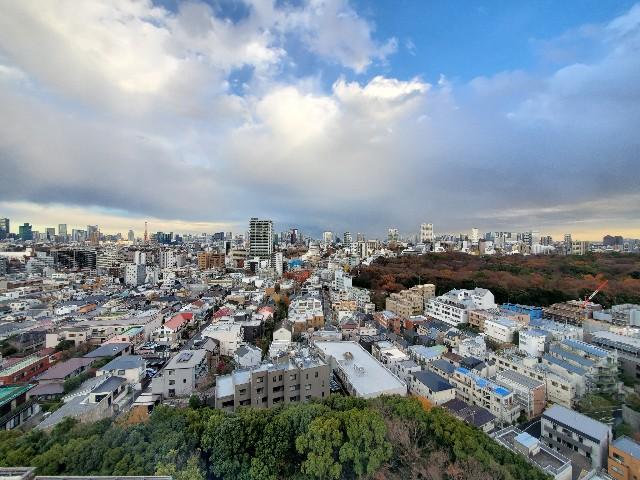 f:id:kinako_yuta:20201227143939j:image