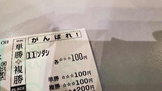 f:id:kinako_yuta:20210523213013j:image