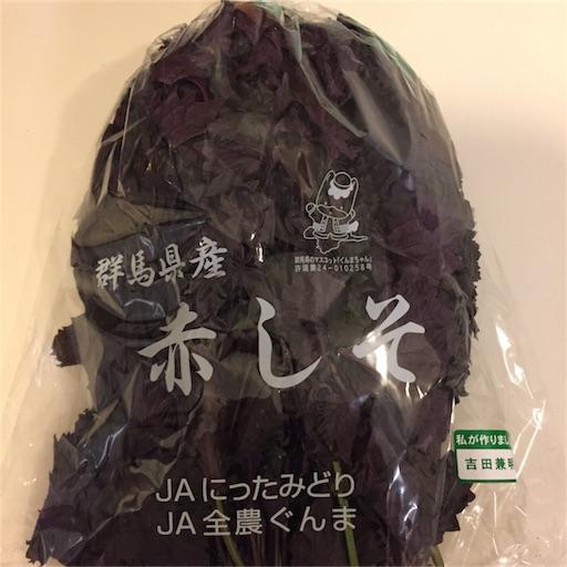 f:id:kinakobun:20180703202926j:image