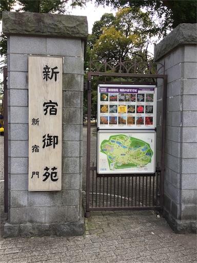 f:id:kinakobun:20181103164754j:image