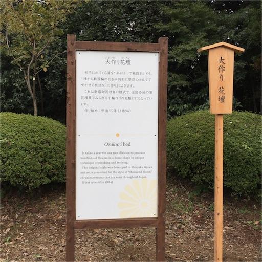 f:id:kinakobun:20181103165327j:image
