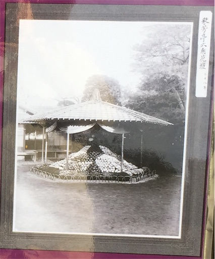 f:id:kinakobun:20181103170842j:image