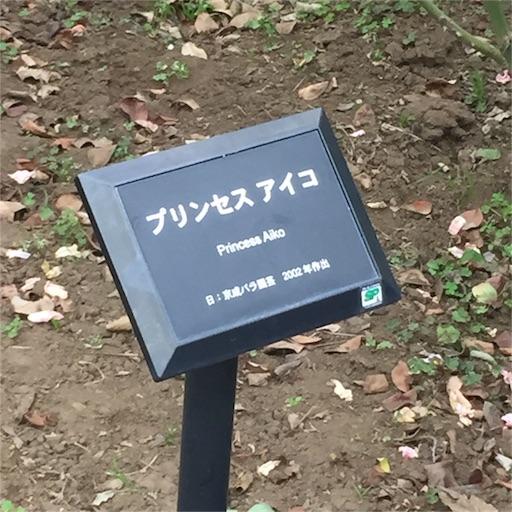 f:id:kinakobun:20181103183749j:image