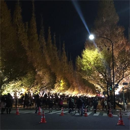 f:id:kinakobun:20181202143940j:image