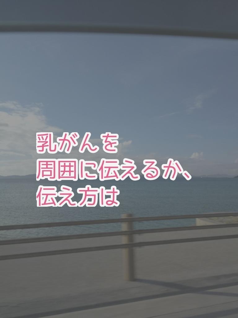 f:id:kinakomamemamama:20180917191612j:plain