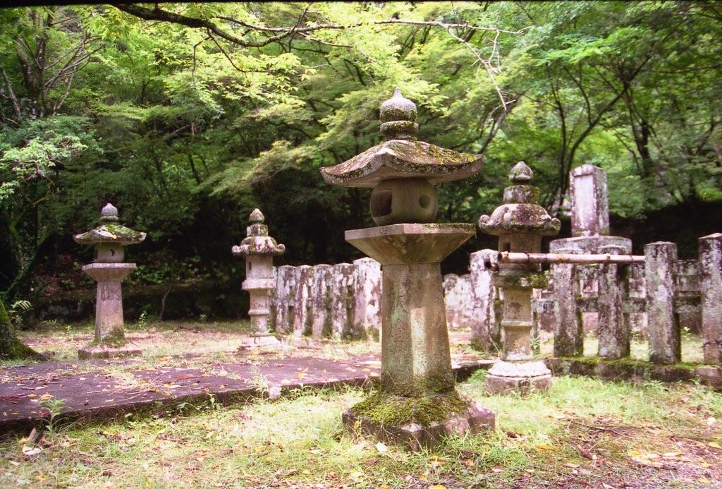 f:id:kinakomaru:20161104230123j:image