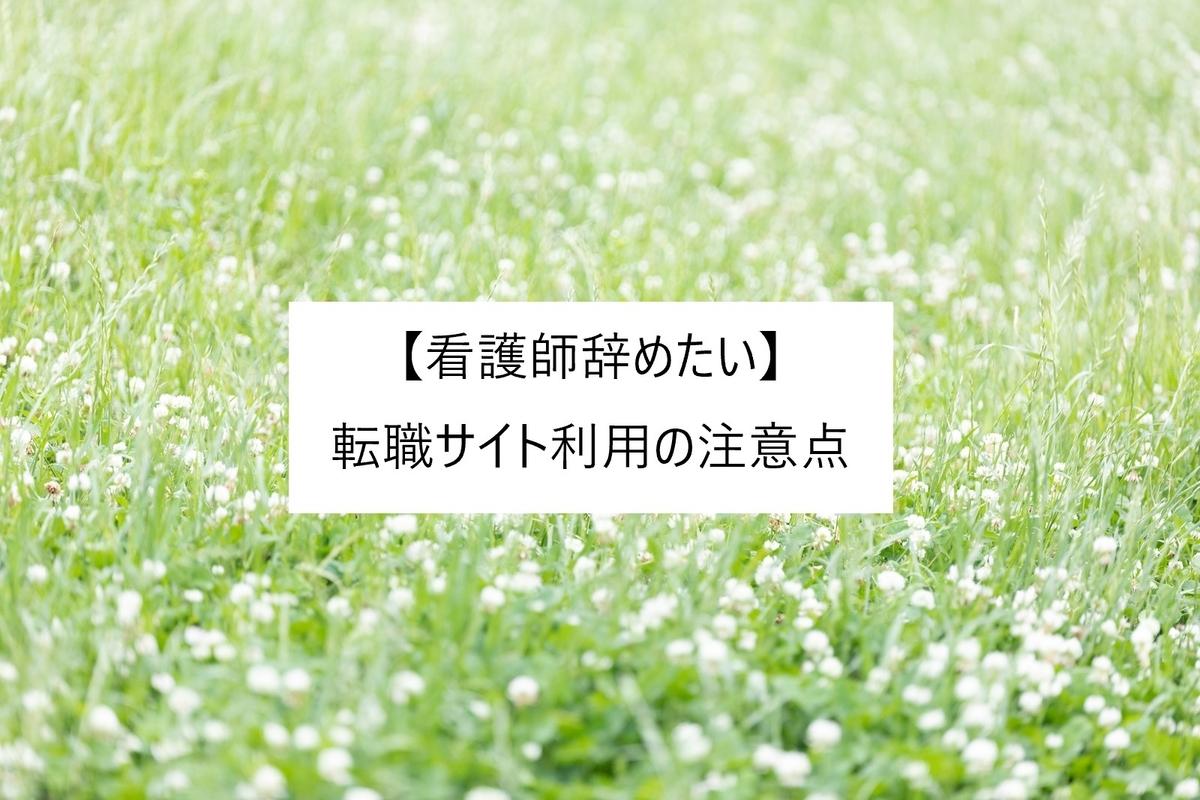 f:id:kinakomochi-ns-life:20190731110533j:plain