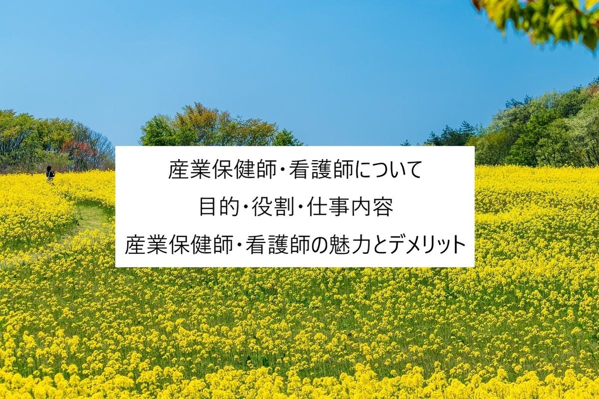 f:id:kinakomochi-ns-life:20190802174133j:plain