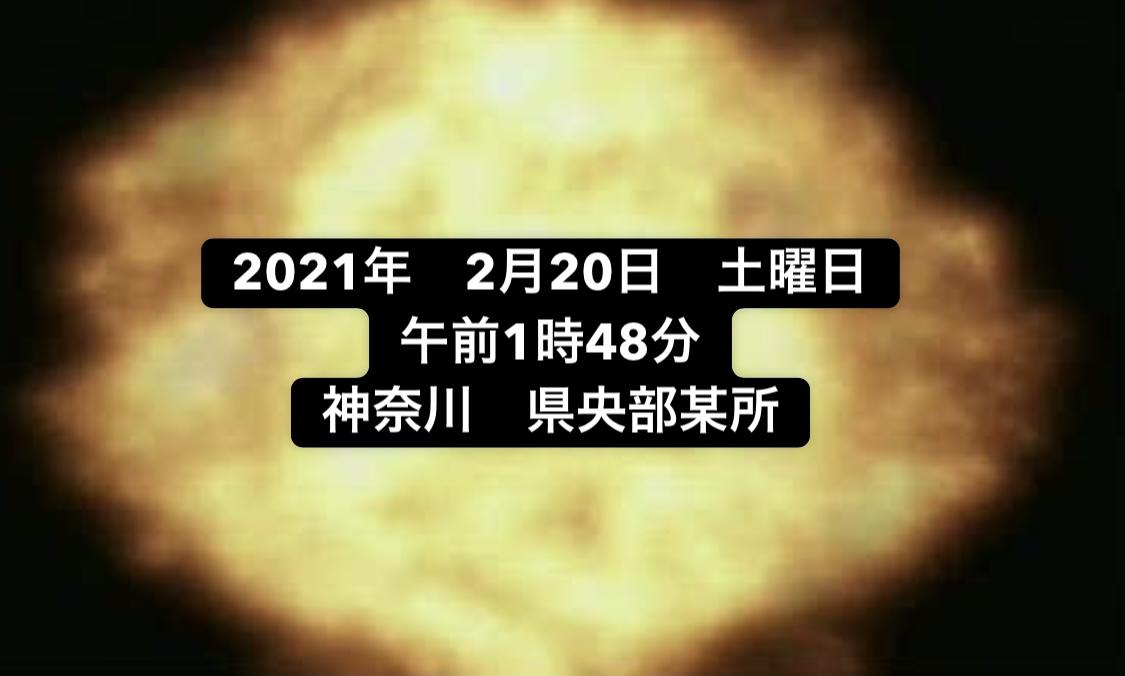 f:id:kinakoweb:20210226010225j:plain