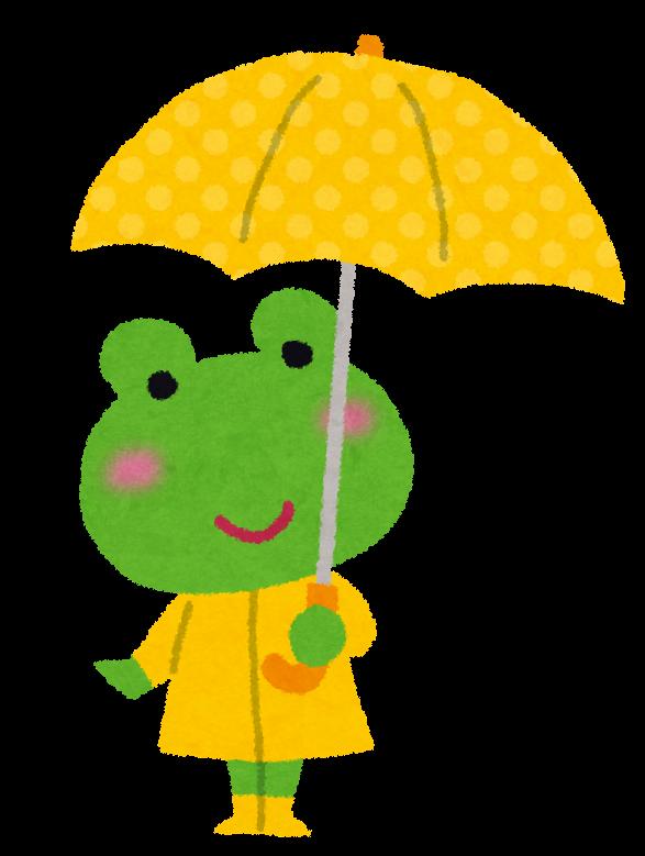 カエル 梅雨