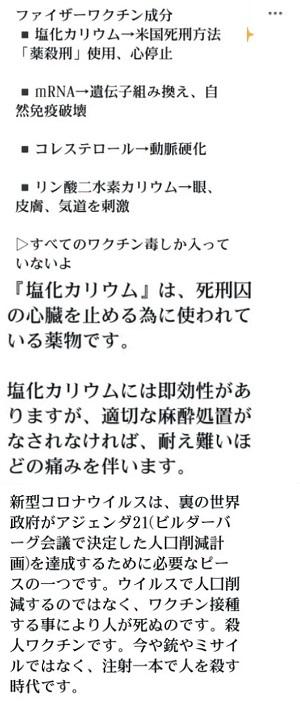 f:id:kinaoworks:20210609234642j:plain