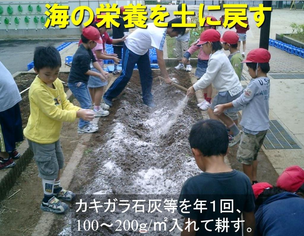 f:id:kinchanfarm:20180419211210j:plain