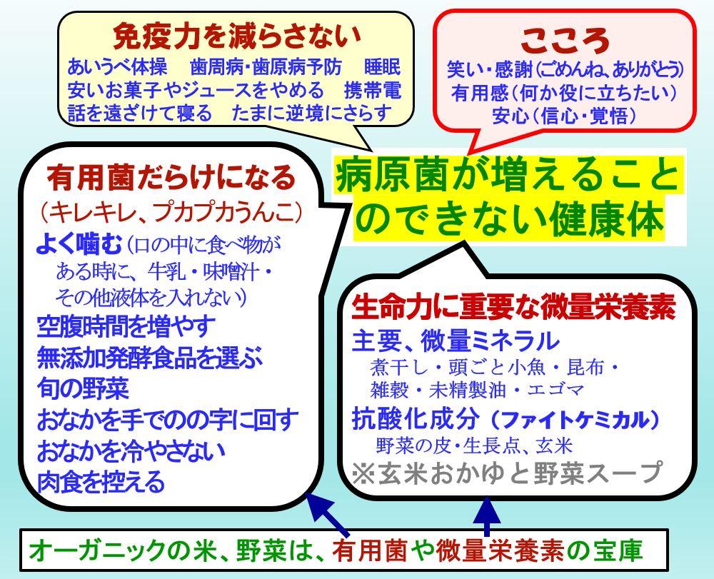 f:id:kinchanfarm:20210101205837j:plain