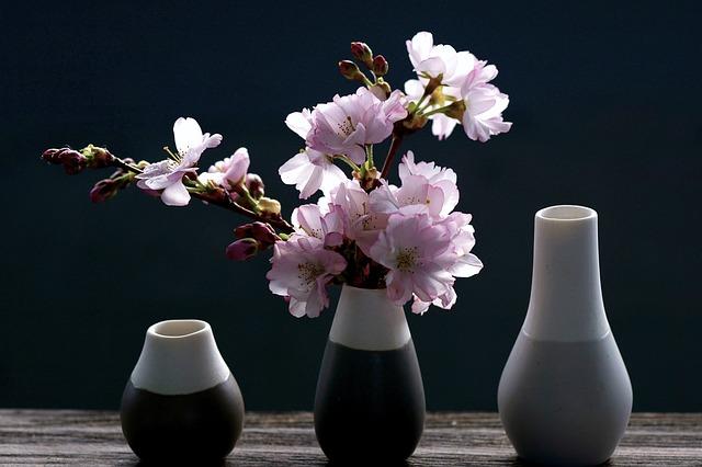 桜,サクラ,さくら,盆栽