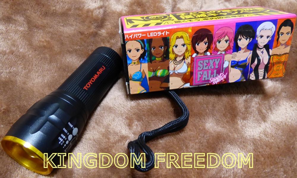 f:id:kingdomfreedom:20200519172741j:plain