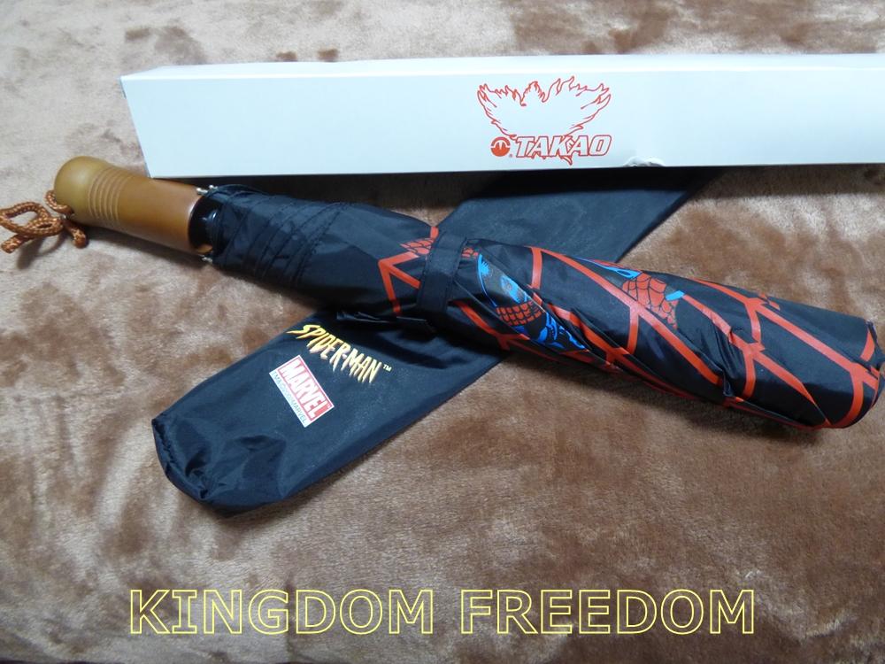 f:id:kingdomfreedom:20200618114415j:plain