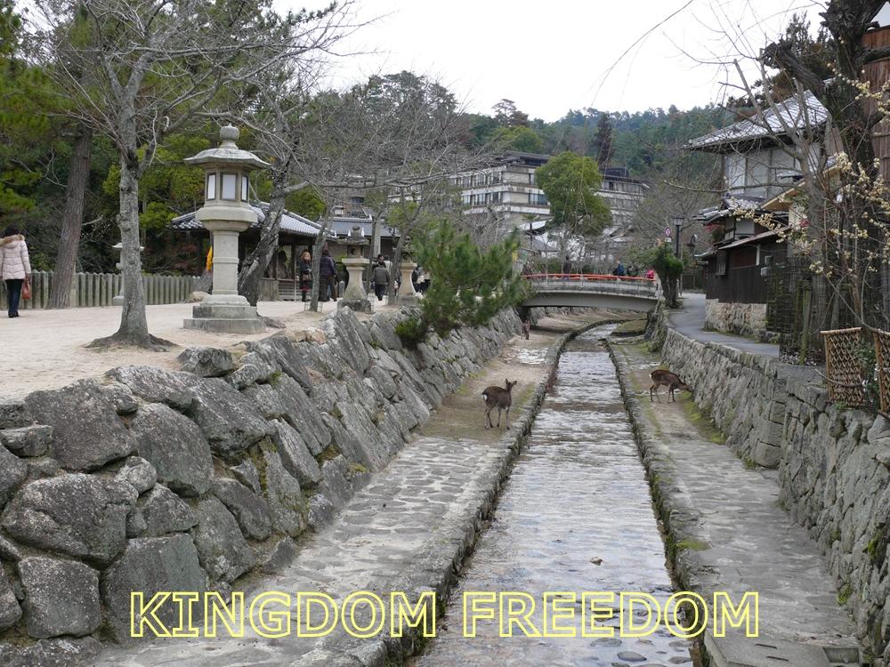 f:id:kingdomfreedom:20201020140532j:plain