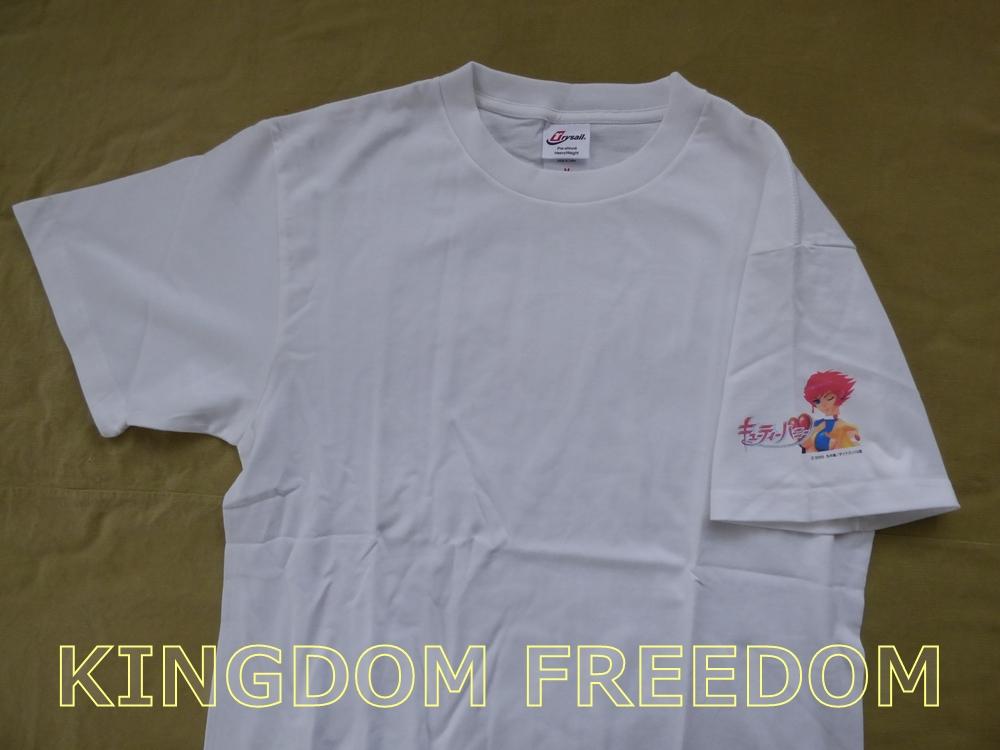 f:id:kingdomfreedom:20201102143348j:plain
