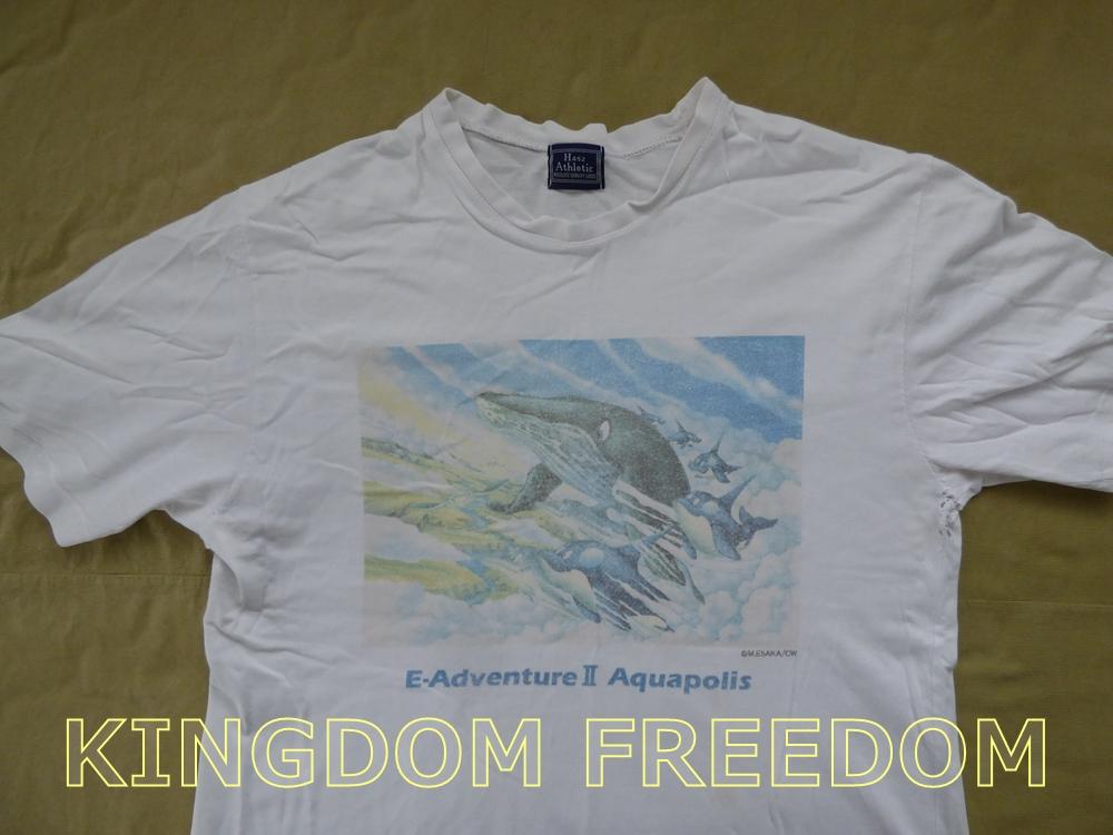 f:id:kingdomfreedom:20201102143529j:plain