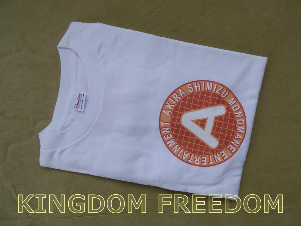 f:id:kingdomfreedom:20201102143705j:plain