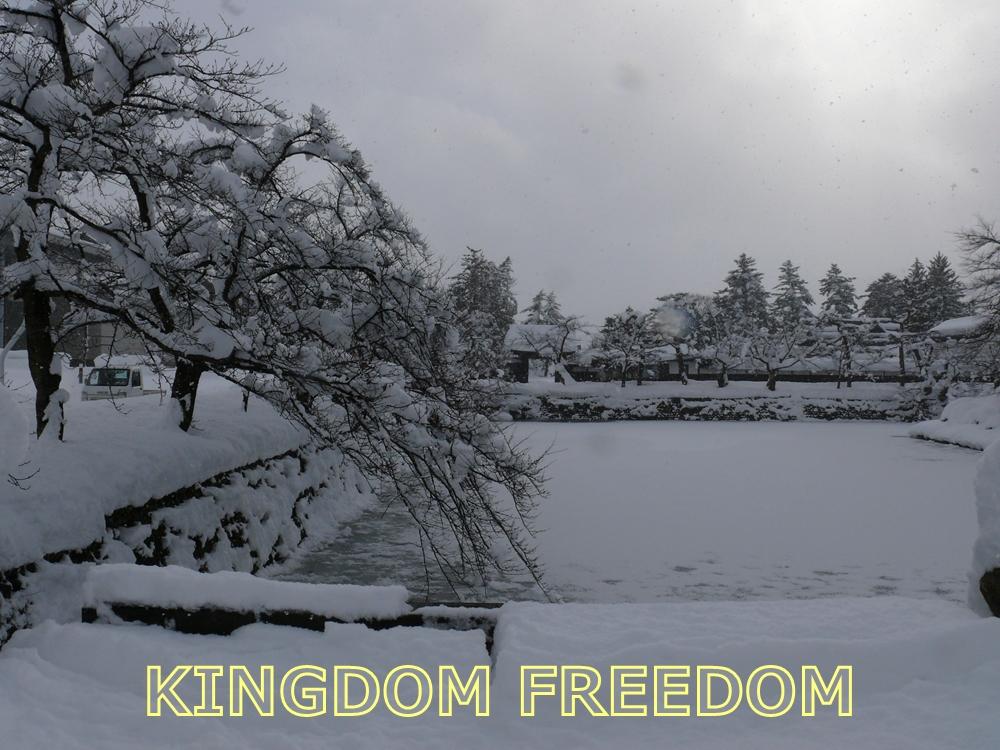 f:id:kingdomfreedom:20201129210427j:plain