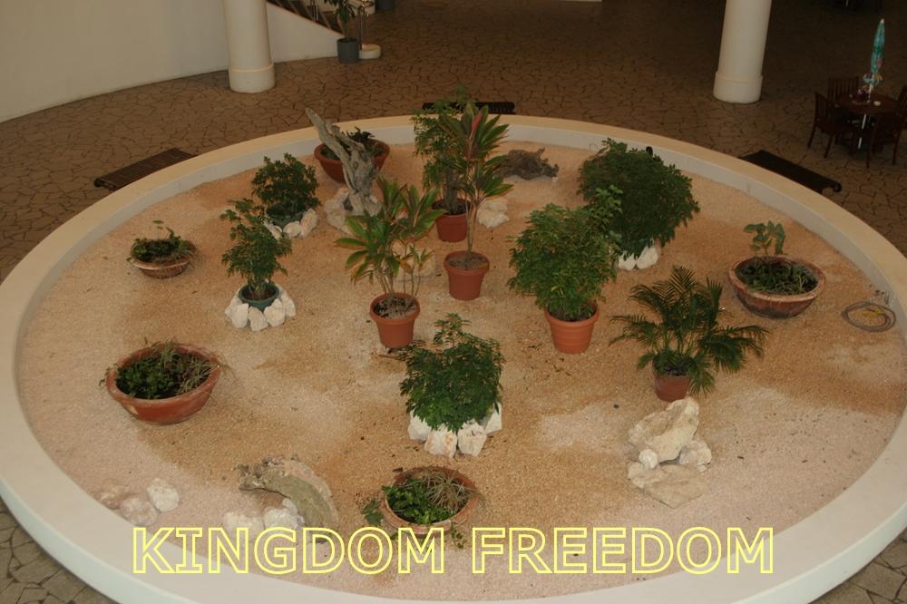 f:id:kingdomfreedom:20201202114906j:plain