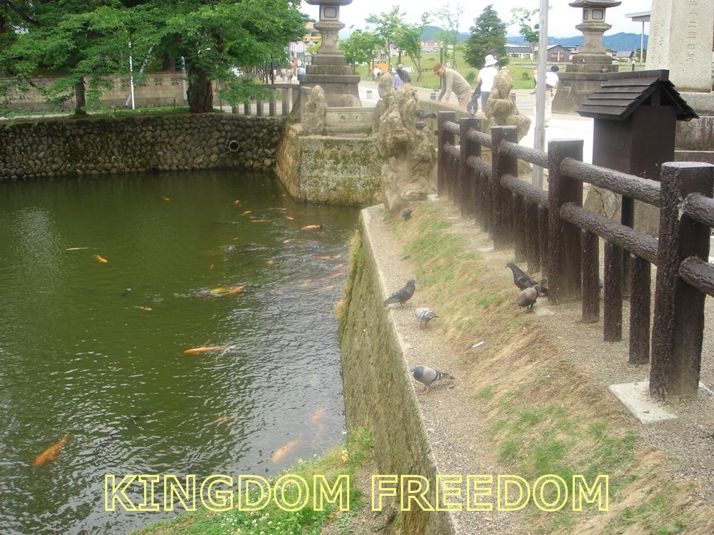 f:id:kingdomfreedom:20210727135416j:plain
