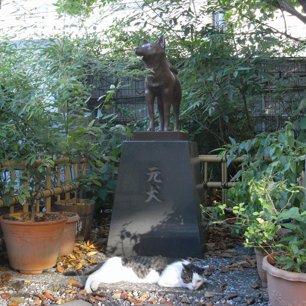 f:id:kingentei-bakyu:20160729212712j:plain