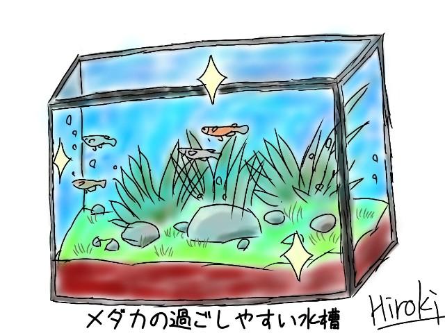 f:id:kinghiro390:20190502214640j:image