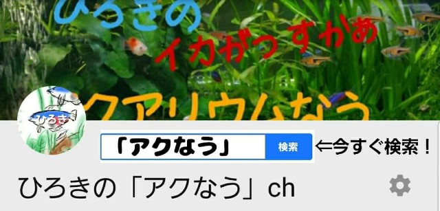 f:id:kinghiro390:20190728004218j:image