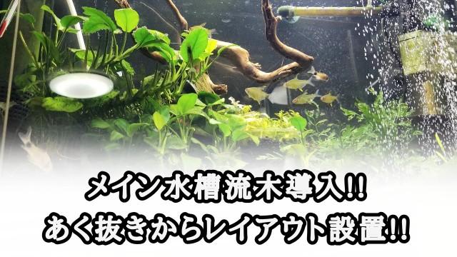 f:id:kinghiro390:20190730203832j:image
