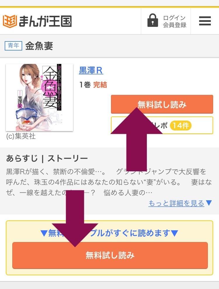 f:id:kingyotsuma:20170515153114j:plain