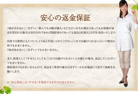 f:id:kininaru-mono:20170109001636j:plain