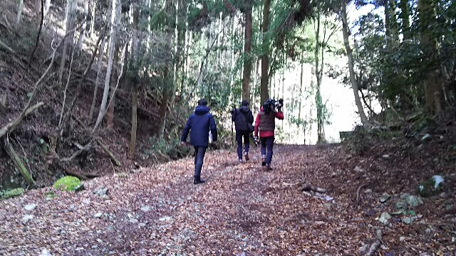 f:id:kinmizuhiki:20170131233233j:image