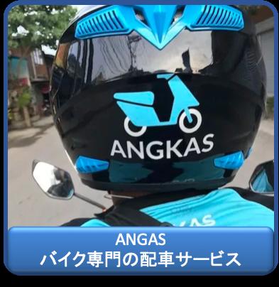 f:id:kinnikongu11:20190417125134p:plain