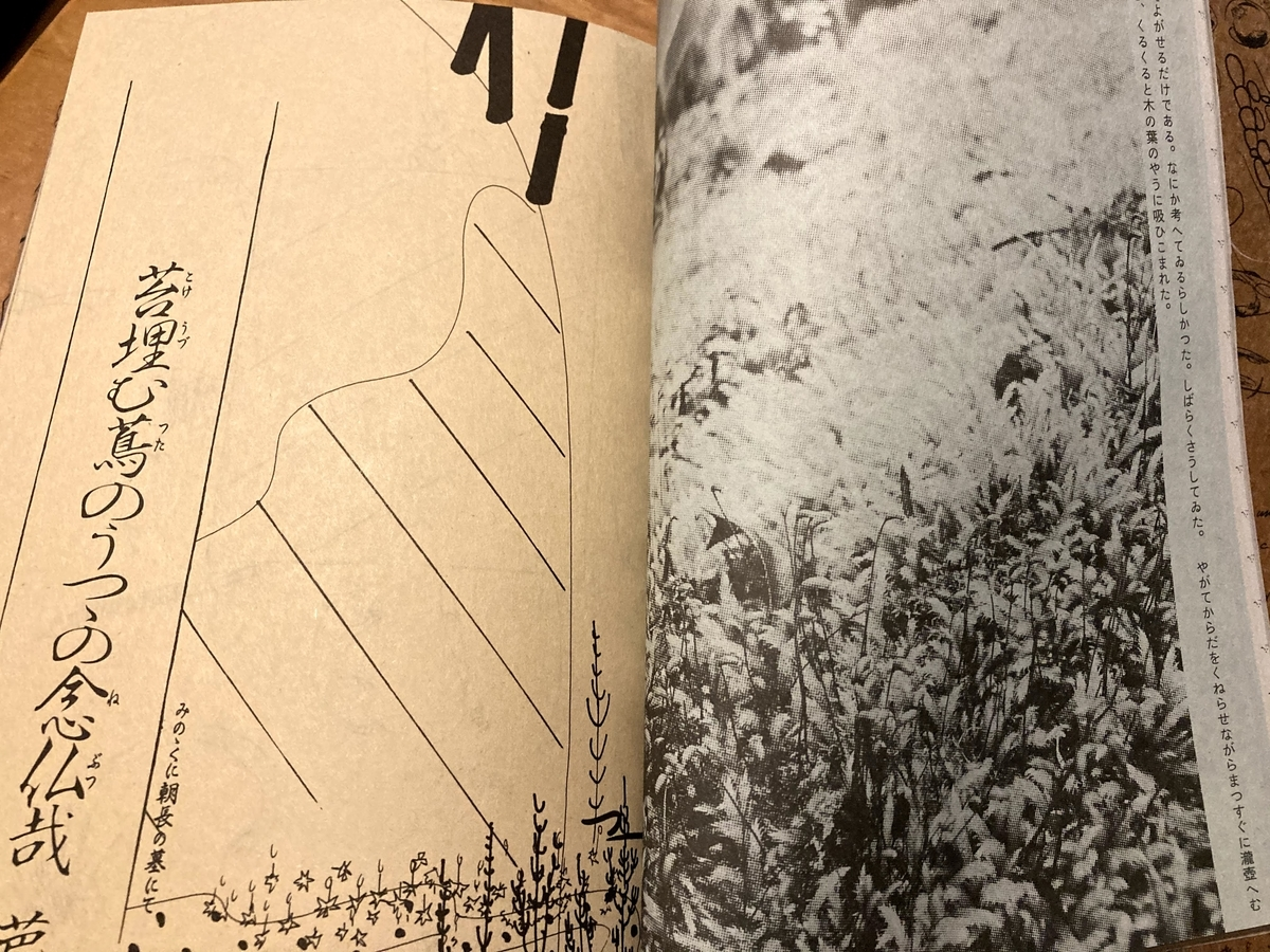 f:id:kino_keno:20201128202220j:plain
