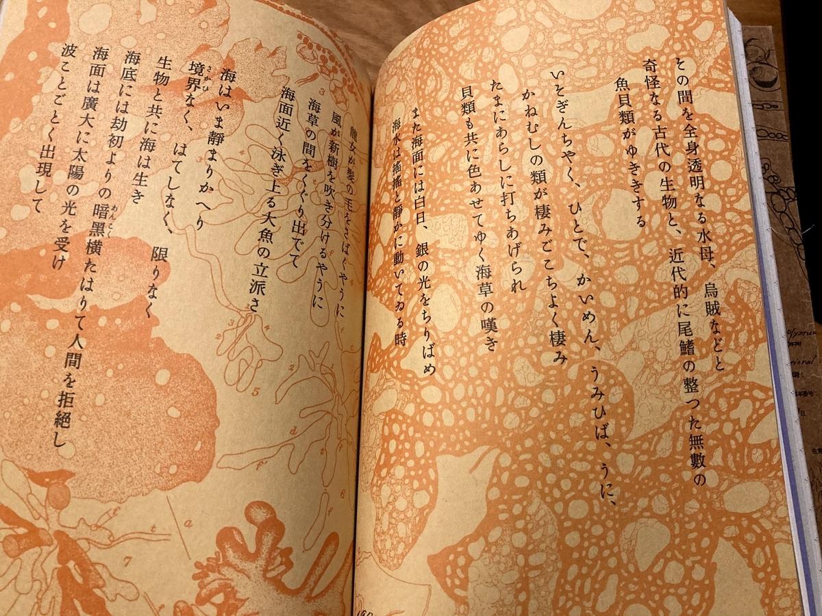 f:id:kino_keno:20201128202501j:plain