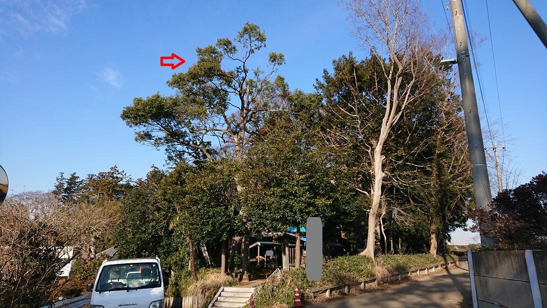 f:id:kinoboriyoshi:20200208221727j:plain