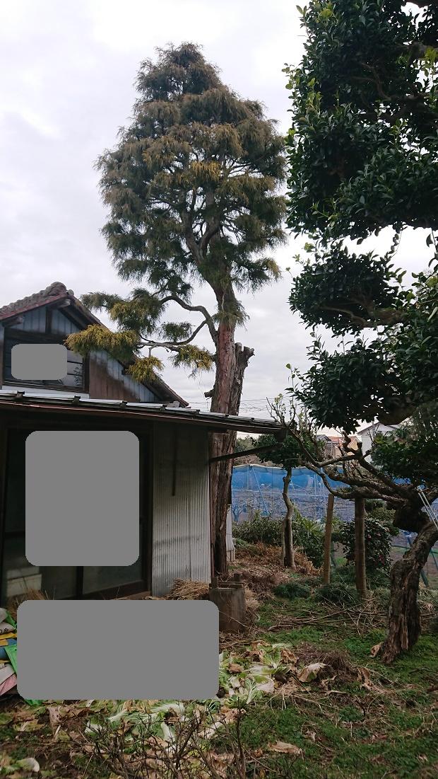f:id:kinoboriyoshi:20200211205502j:plain
