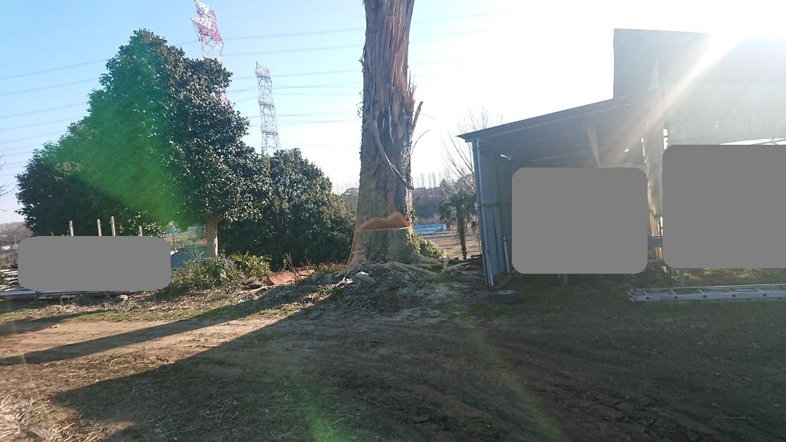 f:id:kinoboriyoshi:20200211211632j:plain