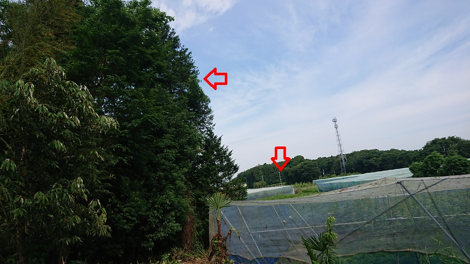 f:id:kinoboriyoshi:20200628223607j:plain