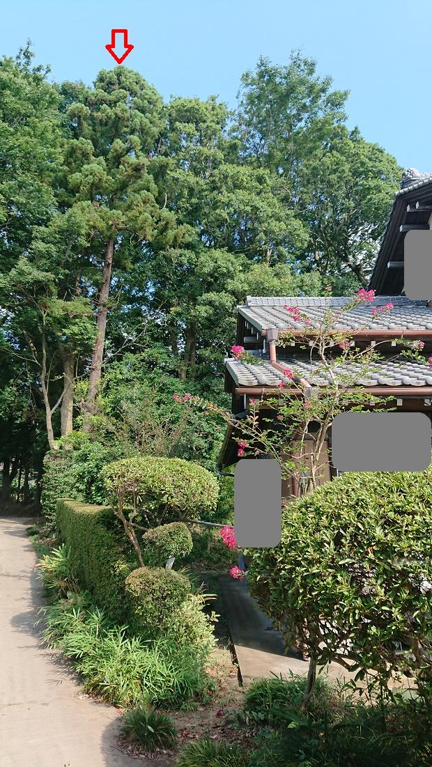 f:id:kinoboriyoshi:20200821232649j:plain